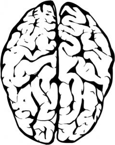 OBENEDICT   Mindset, Denkweisen, richtig und falsch